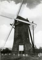 """ARENDONK (Antw.) - Molen/moulin - Zeldzame Achtkante Houten Molen """"De Toreman"""" Of """"Steendonker (1974). - Arendonk"""