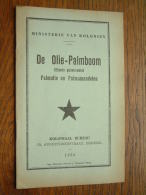 Ministerie Van Koloniën De OLIE-PALMBOOM ( Elaeis Guineensis ) Koloniaal Bureau Anno 1935 Imp. Dison ! - Histoire
