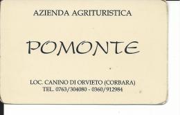 CAL500 - CALENDARIETTO 1998 - AZIENDA AGRITURISTICA POMONTE - LOC. CANINO DI ORVIETO - CORBARA - Calendari