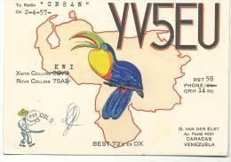 Carte  Radio  Amateur  Qsl :   ,VENEZUELA  Caracas  ;  Oiseau - Toucan - Radio Amateur
