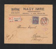 Hungary Registered Cover 1915 To Switzerland - Hungary