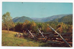 Autumn In Cades Cove - Beatifully Colored Leaves Clearly Mark Autumn In Great Smoky Mountains National Park 1969 - Smokey Mountains