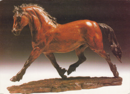 Thematiques Cheval Horse Scole Cam Cliché Judy Boyt Representation De Bronze  Magnifique - Caballos