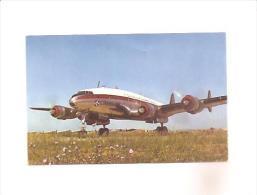 CPA Quadrimoteur Lockheed Constellation Compagnie AIR ALGERIE - 1946-....: Moderne