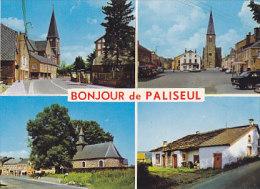 Paliseul - Bonjour De (multivues) - Paliseul