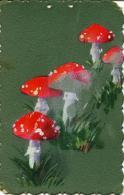 Champignons, Mushrooms, Paddestoel, Pilz, Peints à La Main !!! Carte Très Rigide - Fantaisies