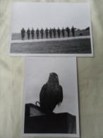 2 PHOTOS / PILOTES DE FALCON  ET LEUR MASCOTTE 1969 - Aviation