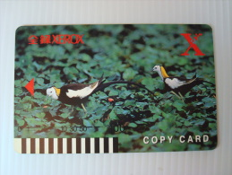Xerox Prepaid Copy Card: Pheasant-tailed Jacana - Phonecards