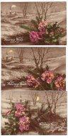 Heureux Noël -  3 Cartes Paysage Similaire Avec Bouquet - Lune Clocher Neige - FURIA 1908 - Christmas