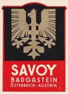 AUSTRIA BADGASTEIN HOTEL SAVOY VINTAGE LUGGAGE LABEL - Etiquettes D'hotels