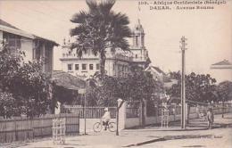 Senegal Dakar Avenue Roume