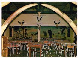 M204 Cameroun - Oudjila - Vue Interieure Du Campement - Le Safari De Mora / Non Viaggiata - Camerun