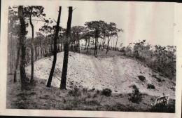 9000     ST MARTIN DE BREM   1951        TIMBRE VERSO - Frankrijk