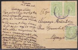 2310. Kingdom Of Serbia, 1920, Postcard - Serbie