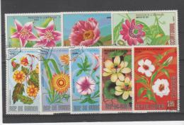 GUINEE  EQUATORIALE- Timbres Oblitérés - Fleurs - Guinée Equatoriale