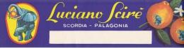 ETICHETTA PUBBLICITARIA-AGRUMI  LUCIANO SCIRE' --SCORDIA -PALAGONIA -TIPO 1 - Pubblicitari