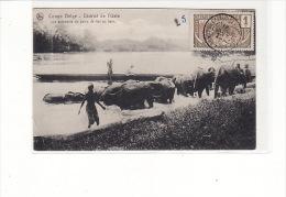 Congo Belge - Distict De L'Uele - Les éléphants Du Poste De Api Au Bain - Congo Belge - Autres