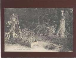 35 Teillay Près Sion La Tombe à La Fille De La Forêt édit. Drouard N° 3420 - France