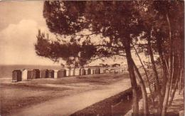 C 9371 - CARNAC - 56 - Un Coin Du Parc Du Grand Hotel - - Carnac