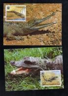R. CONGO  Nº 361 AL364 MAXIMAS - Unclassified