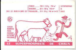 Buvard Agriculture Tous Les Jours, Dans Les étables, Bergeries, Poulaillers Le Superphosphate De Chaux (SDS) - Agriculture