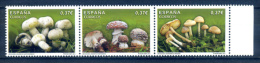 Spain 2013 Spanien España / Mushrooms MNH Setas Pilze / Ib10 - Champignons