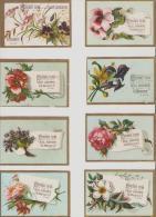 Lille.Chicorée Extra. A La Belle Jardiniere.Beriot A Lille. Fleurs. - Otros