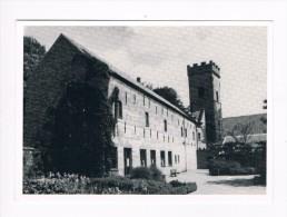 Beernem de oude bijgebouwen van 't Bulskampveld met stukje kruidentuin