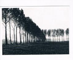 Beernem het Beverhoutsveld