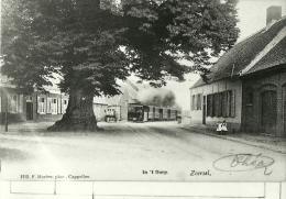 PHOTOGRAPHIE DE L ARRIVEE  DU TRAMWAY A VAPEUR A IN T DORP ZOERSEL CLICHE DE DE BACKER - Repro's