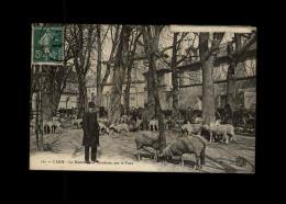 14 - CAEN - Marché Aux Moutons - Caen