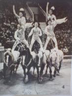 Circus USSR  PC Small Size 9.5/7.5 Cm - Zirkus