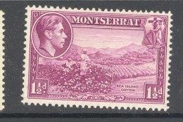 MONTSERRAT, 1938 1½d (P13) Very Fine Light MM , Cat £23 - Montserrat