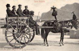 [DC7124] CARRO SICILIANO - Viaggiata 1905 - Old Postcard - Italië