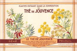 ¤¤  -  Illustrateur  -  Plantes  -  THE De Jouvence  -  Fenouil , Infusion , Fleurs   -  ¤¤ - Gesundheit