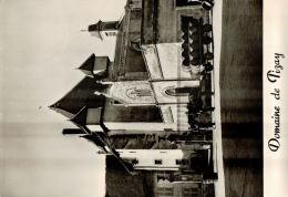 CPSM    SAINT GEORGES  DE RENEINS  Domaine De Pizay - France