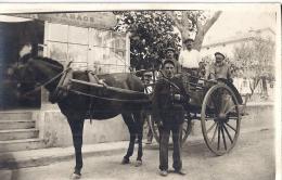 ATTELAGE TIRE PAR CHEVAL NOIR-3 HOMMES AU BERET ET GARDE CHAMPETRE