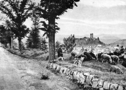 Paysage Pris De La Route De Saint-Paulien - - Unclassified