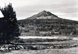 LE LIZIEUX - Mont Du Velay - Unclassified