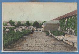 78 - MONTESSON --  Ecole Départemente Théophile ROUSSEL --  Elève Jardiniers Aux Serres - Montesson