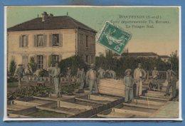 78 - MONTESSON --  Ecole Départemente Théophile ROUSSEL -- Le  Potager Sud - Montesson