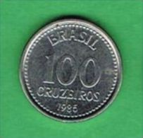 X105 Brasil 100 Cruzeiros 1986 - Brasile