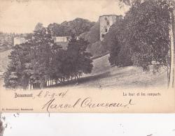 BEAUMONT : La Tour Et Les Remparts - Beaumont