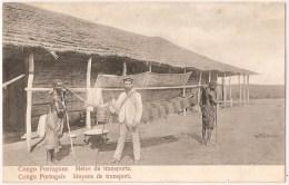 Congo Português - Cabinda - Transporte. Angola. Ethnique. Ethnic. Colónias. Costumes. História Postal. Filatelia. - Angola