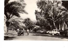 AFRIQUE----DJIBOUTI--le Centre--voir 2 Scans - Dschibuti