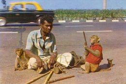 Inde - Bombay - Montreur De Singes - India