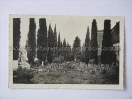 Aquileia 14 - Unclassified