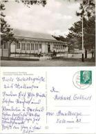 AK Mellensee, Teltow Fläming, Kiefernallee, Ferienheim Des Kaliwerk Bernburg - Teltow
