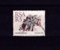 V] Timbre Oblitéré Cancelled Stamp Afrique Du Sud RSA South-Africa Cactus Kaktus Flore Flora - Sukkulenten