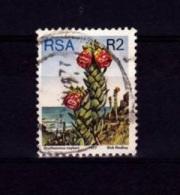 V] Timbre Oblitéré Cancelled Stamp Afrique Du Sud RSA South-Africa Cactus Kaktus Flore Flora 1977 - Sukkulenten
